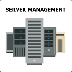Professional server services